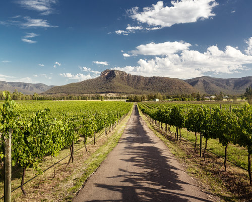Hunter-Valley-Features